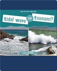 Tidal Wave or Tsunami?