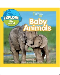 Explore My World Baby Animals