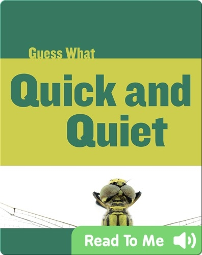 Quick and Quiet