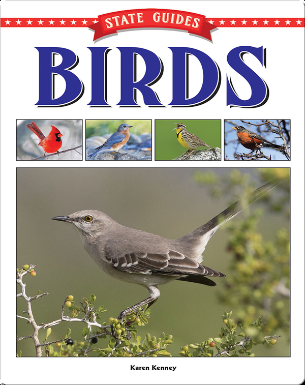 State Guides to Birds