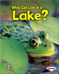 What Can Live in a Lake?