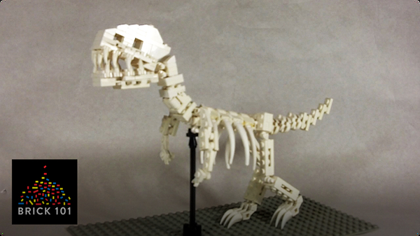 How To Build a LEGO T-Rex Skeleton