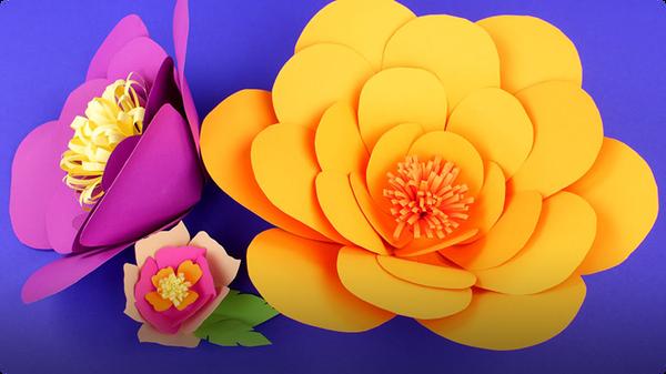 DIY Paper Flower Decorations