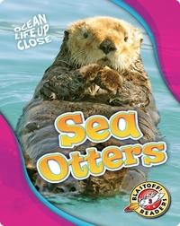 Ocean Life Up Close: Sea Otters