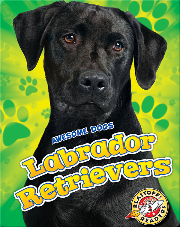 Awesome Dogs: Labrador Retrievers