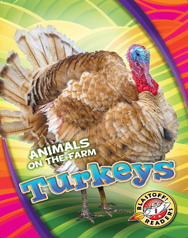 Animals on the Farm: Turkeys