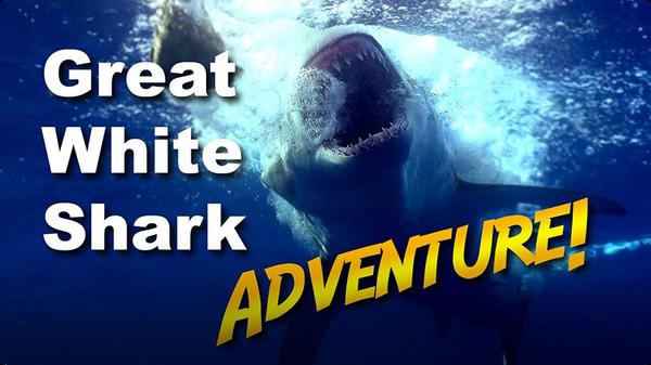Jonathan Bird's Blue World: Great White Shark Adventure!