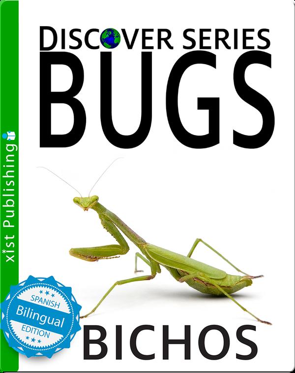 Bichos/ Bugs