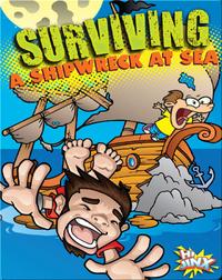 Surviving A Shipwreck At Sea