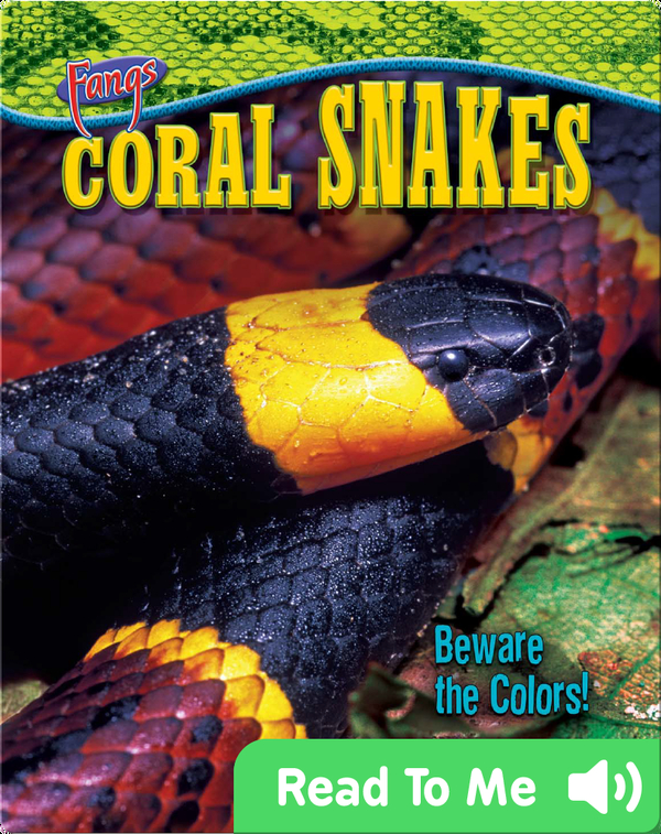 Coral Snakes: Beware the Colors!