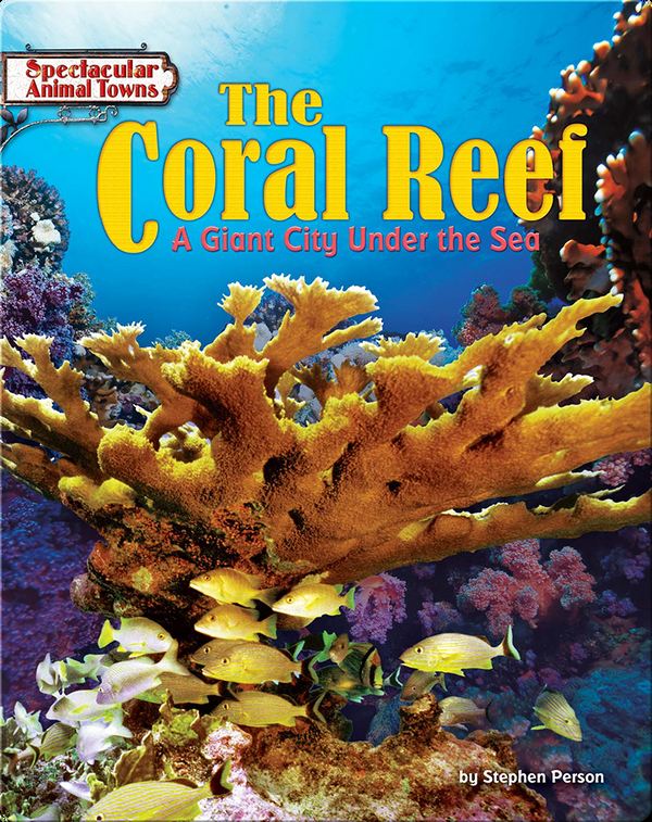 The Coral Reef: A Giant City Under the Sea