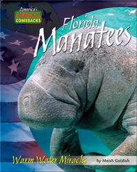 Florida Manatees: Warm Water Miracles