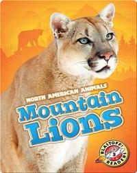 Mountain Lions