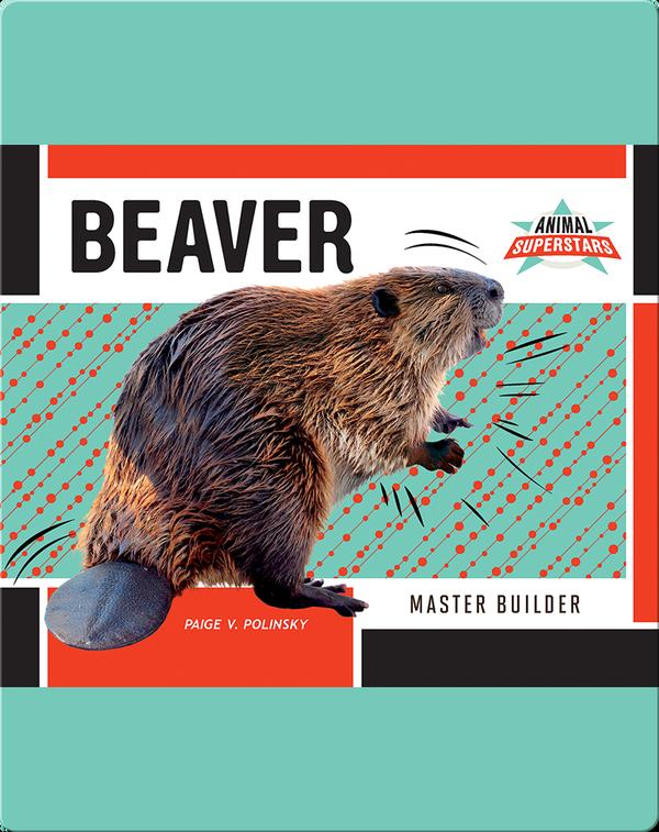 Beaver: Master Builder