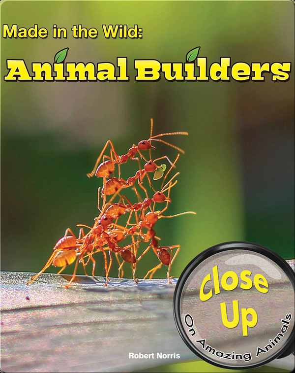 Made in the Wild: Animal Builders