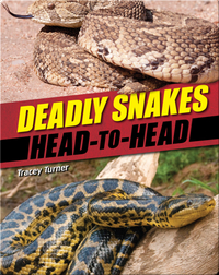Deadly Snakes
