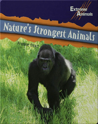 Nature's Strongest Animals