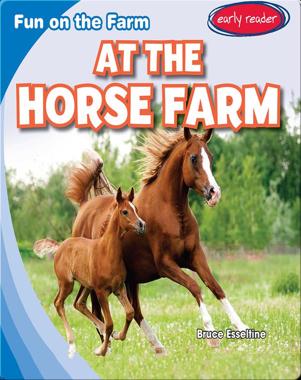 At the Horse Farm