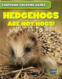 Hedgehogs Are Not Hogs!