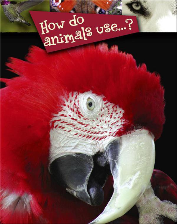 How Do Animals Use…?
