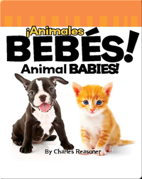 ¡Animales Bebés! (Animal Babies!)