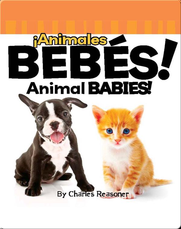 ¡Animales Bebés! (Animal Babies!)