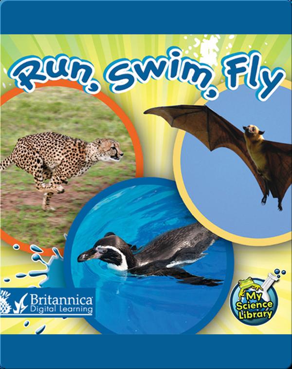 Run, Swim, Fly