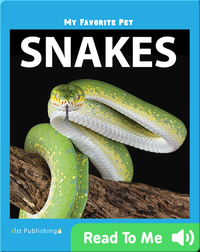 My Favorite Pet: Snakes