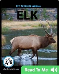 My Favorite Animal: Elk