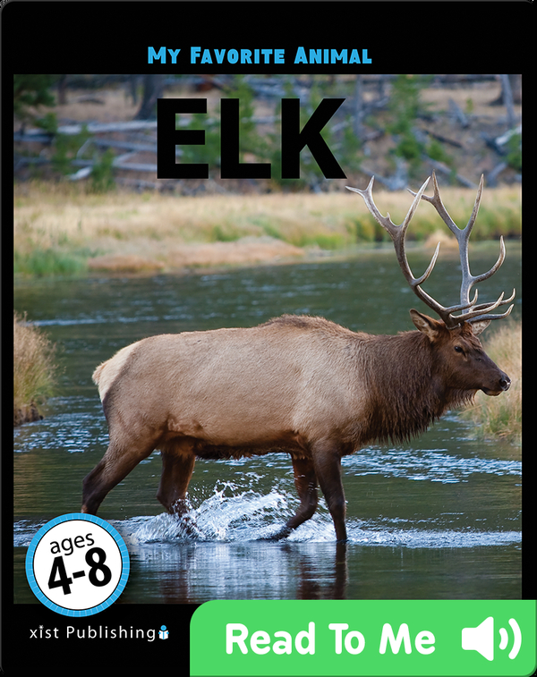 My Favorite Animal: Elk