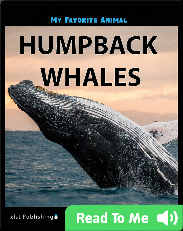 My Favorite Animal: Humpback Whales