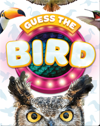 Guess the Bird