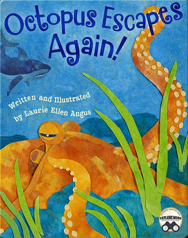 Octopus Escapes Again!