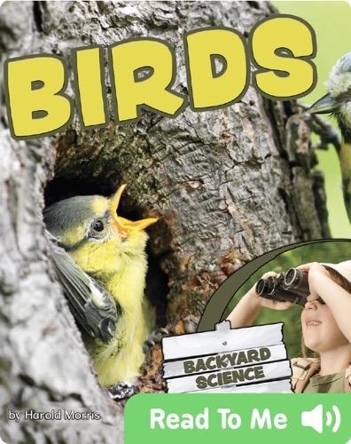 Back Yard Science - Birds