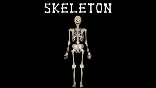 Skeletal System Song | The Human Body for Kids