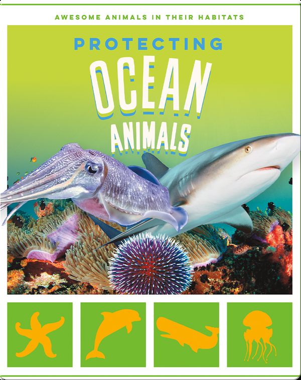 Protecting Ocean Animals