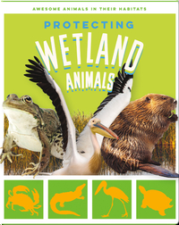 Protecting Wetland Animals