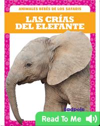 Las crías del elefante (Elephant Calves)