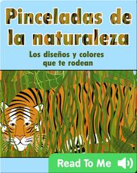 Pinceladas de la Naturalezaq: Los diseños y colores que te rodean
