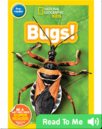 National Geographic Readers: Bugs (Pre-reader)