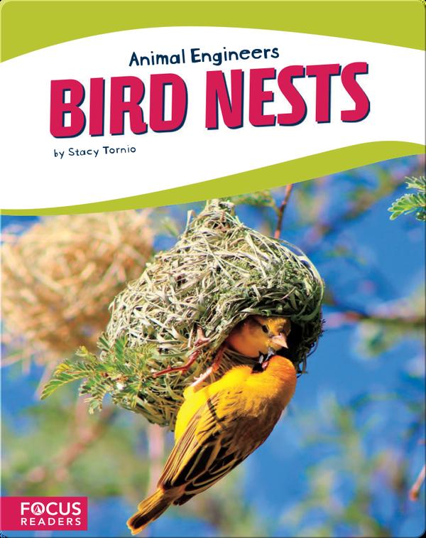 Animal Engineers: Bird Nests