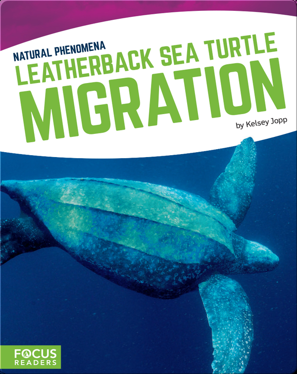 Natural Phenomena: Leatherback Sea Turtle Migration