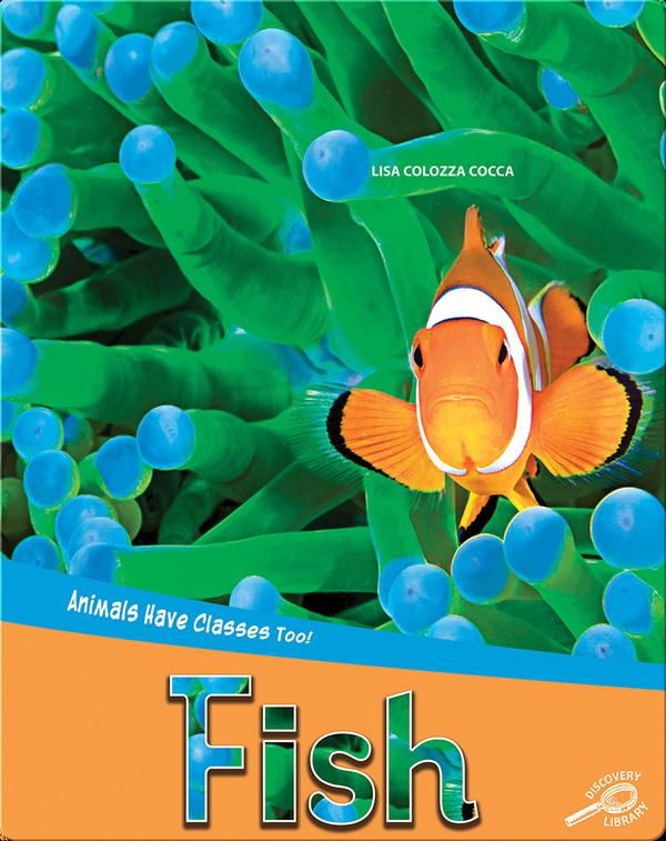 Animals Have Classes Too!: Fish