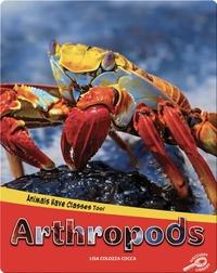 Animals Have Classes Too!: Arthropods