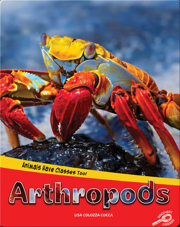 Animals Have Classes Too!: Arthropods