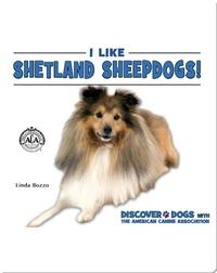 I Like Shetland Sheepdogs!