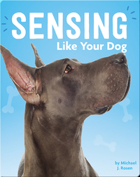 Sensing Like Your Dog