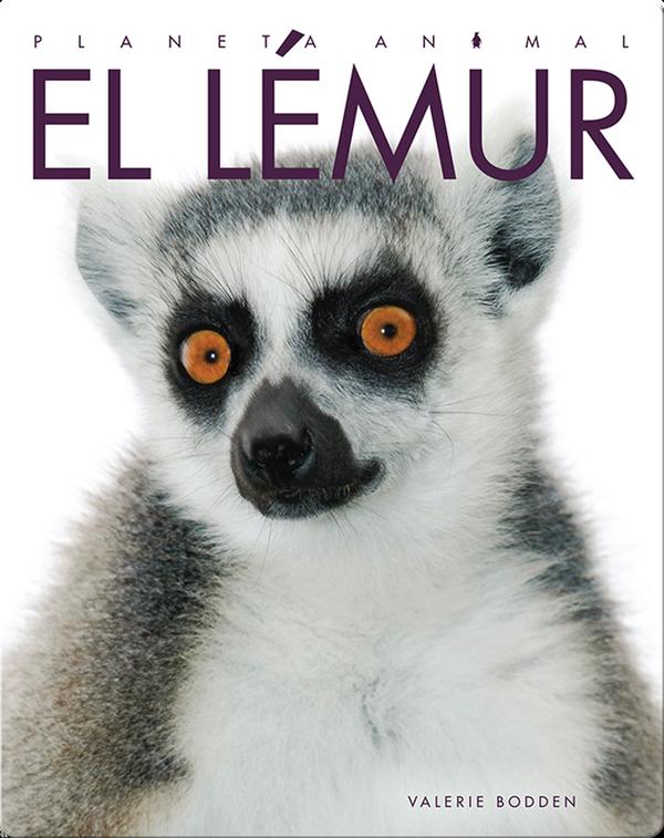 Planeta Animal: El Lémur