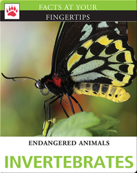 Endangered Animals: Invertebrates
