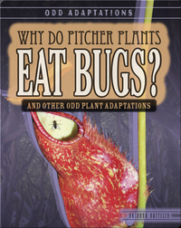 Why Do Pitcher Plants Eat Bugs? And Other Odd Plant Adaptations